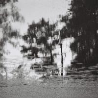 la ferme de Vernand - l'étang