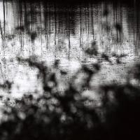 paysage d'eau 7